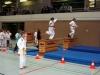 Judo-Safari 2010